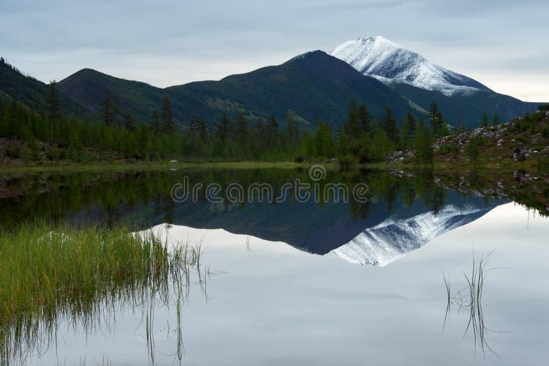 Reflexionen av snö-korkade maxima i en bergsjö arkivfoton
