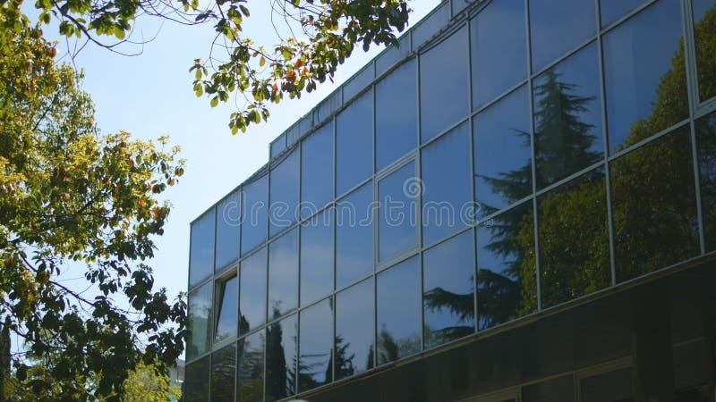 Reflexionen av tr?d i f?nstren av ett modernt h?ghus med en exponeringsglasfasad som st?r n?ra, parkerar royaltyfri bild