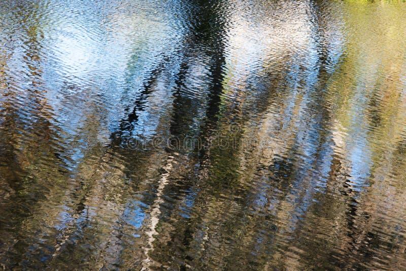 Reflexionen im Wasser lizenzfreie stockfotos