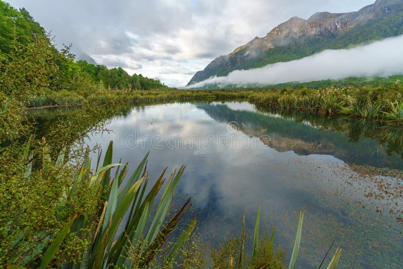 Reflexionen von Bergen in den Spiegelseen, Neuseeland 1 stockfotografie
