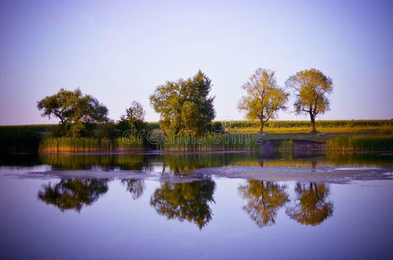 Reflexionen von grünen Bäumen, von blauem Himmel und von Wolken im ruhigen Wassersee stockbilder
