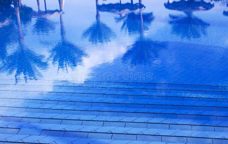 Reflexionen von Palmen im Wasser eines Swimmingpools stockbild