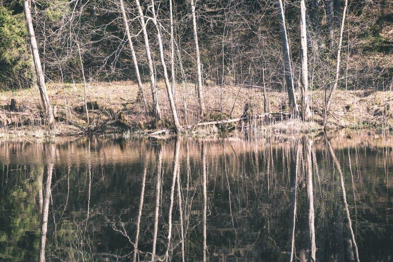 reflexioner av träd i bergfloden i sommar - retro tappning royaltyfri foto