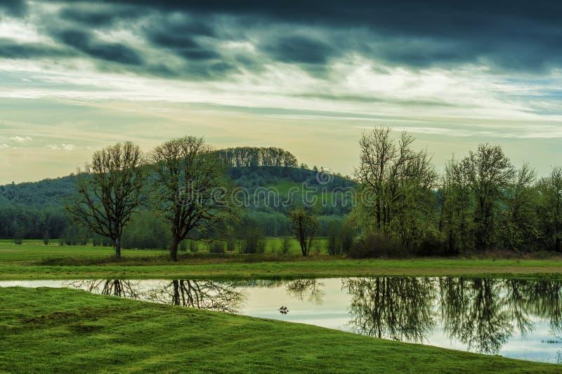 Reflexioner för tidig ljus ensemble för gryningar skuggiga i dammet royaltyfri foto
