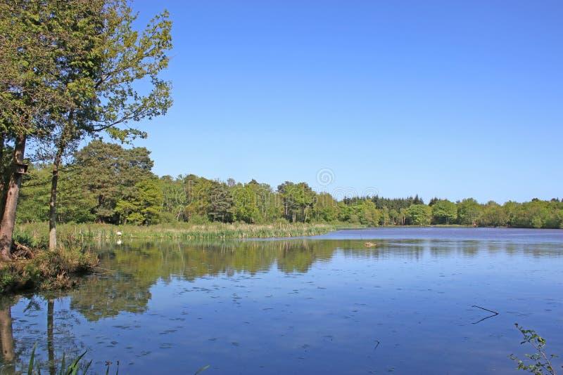 Reflexioner i Stover sjön, Devon arkivfoto