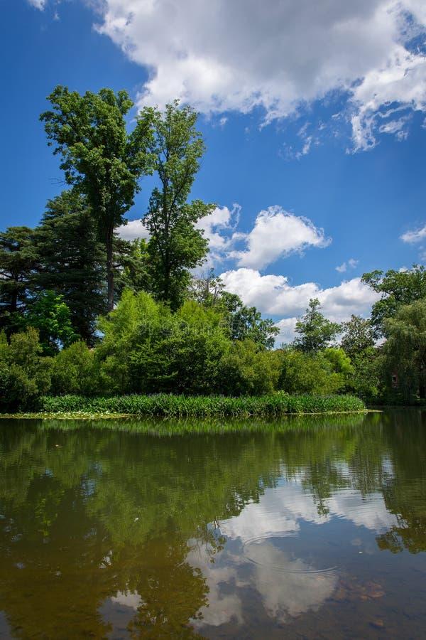 Reflexioner på Dell Charlottesville Virginia arkivbilder