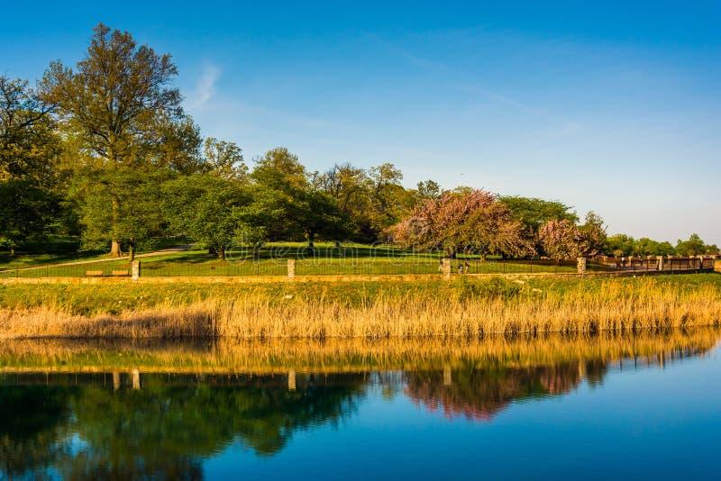 Reflexiones de árboles en el lago druid, en el parque de la colina del druida en Baltim imagen de archivo libre de regalías