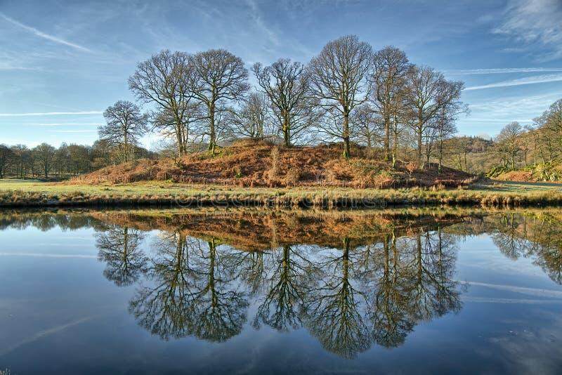 Reflexiones de un soto de árboles en Elterwater fotografía de archivo