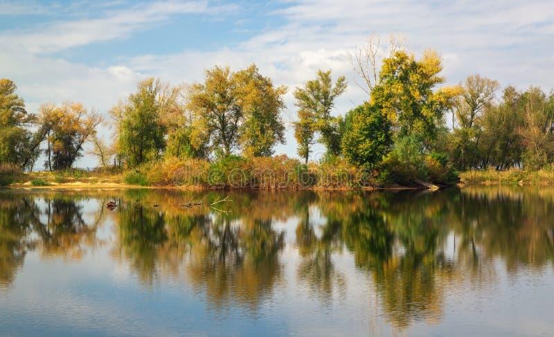 Reflexiones del árbol en el lago en tiempo del otoño imagenes de archivo