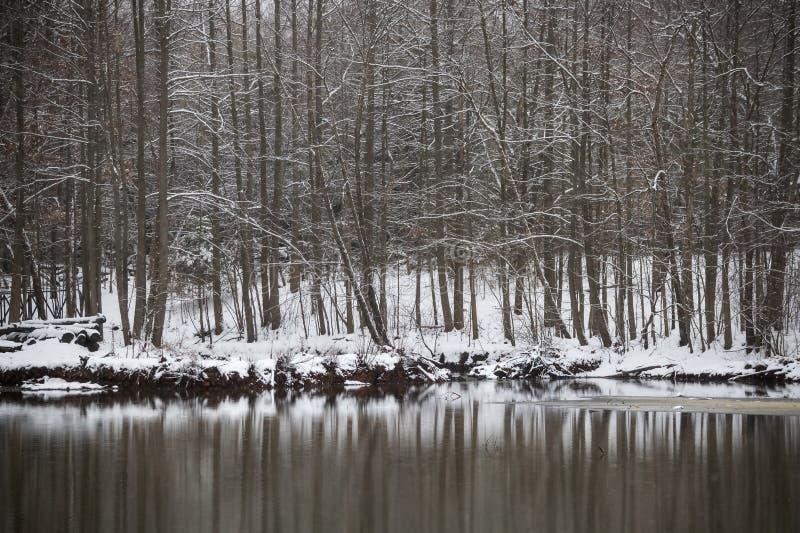 Reflexiones del invierno imágenes de archivo libres de regalías