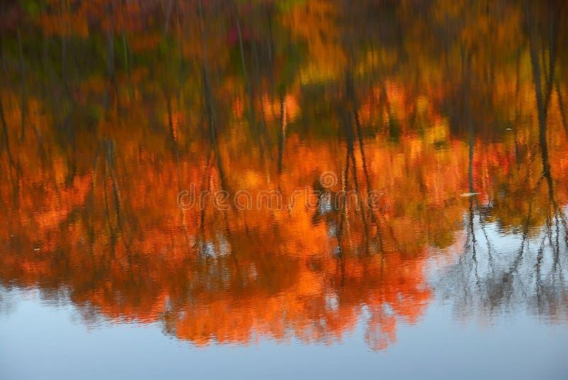 Reflexiones del otoño imágenes de archivo libres de regalías