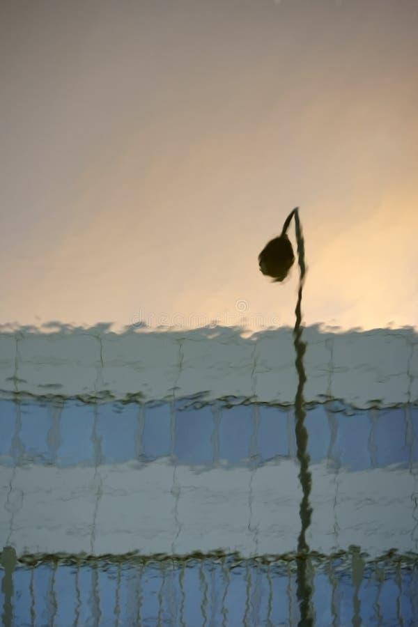 Reflexiones en el agua foto de archivo