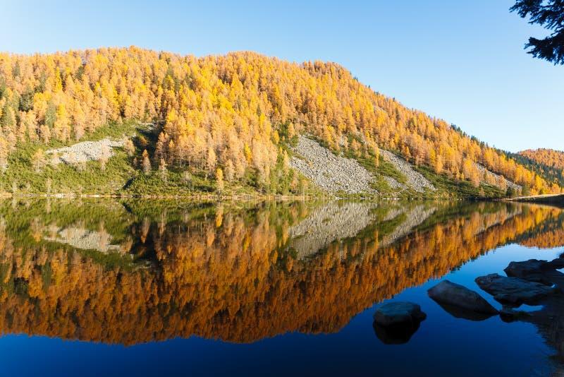 Reflexiones en el agua, panorama del otoño del lago de la montaña imagen de archivo