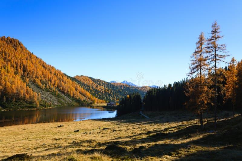 Reflexiones en el agua, panorama del otoño del lago de la montaña imagenes de archivo