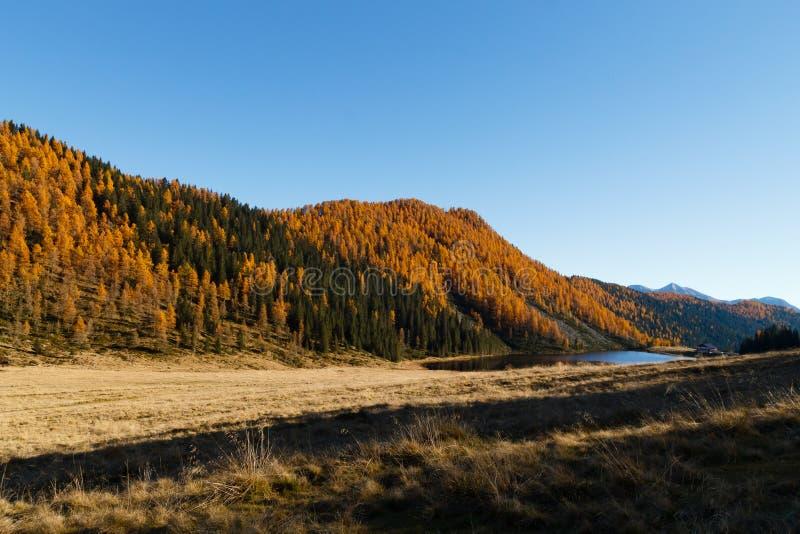 Reflexiones en el agua, panorama del otoño del lago de la montaña imágenes de archivo libres de regalías