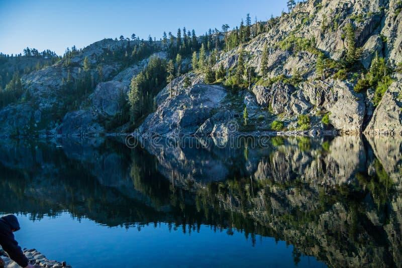 Reflexiones en el lago kangaroo fotos de archivo