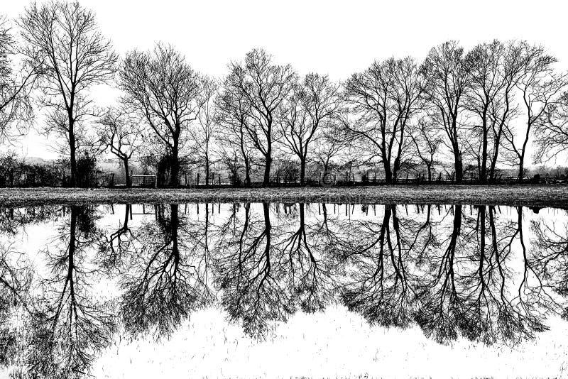 Reflexiones rurales imagen de archivo