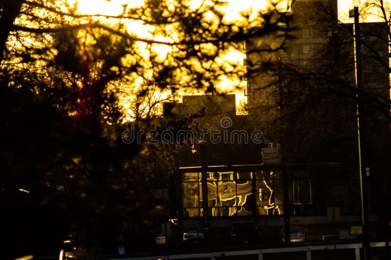 Reflexiones urbanas de la puesta del sol sobre el vidrio imagen de archivo
