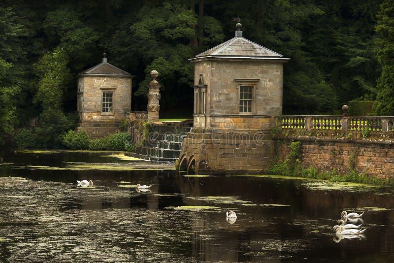 Reflexiones y jardines de los cisnes imagen de archivo libre de regalías
