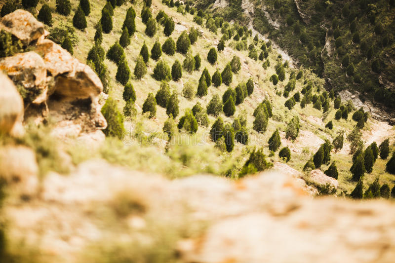 Reforested areas in the mountains, Shanxi Province, China stock photo