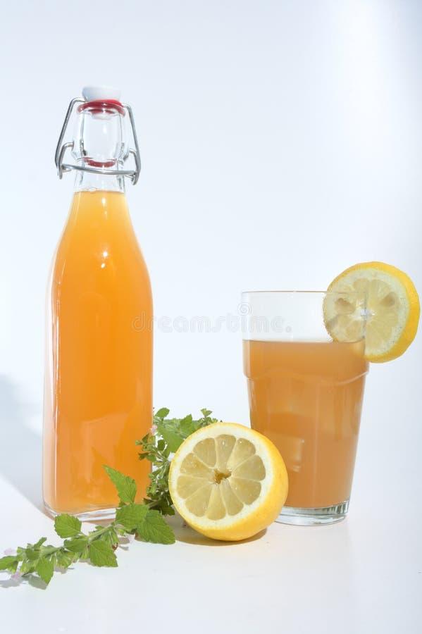 Refreschment med fruktsaftbavarege och is fotografering för bildbyråer