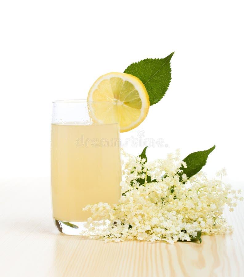 Refresco condimentado flor del verano de la baya del saúco imagenes de archivo