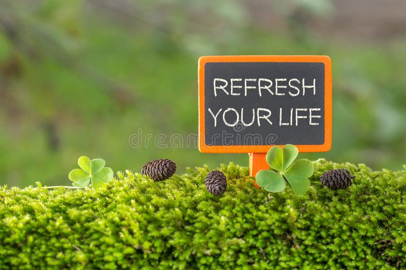 Refresh your life text on small blackboard royalty free stock photos