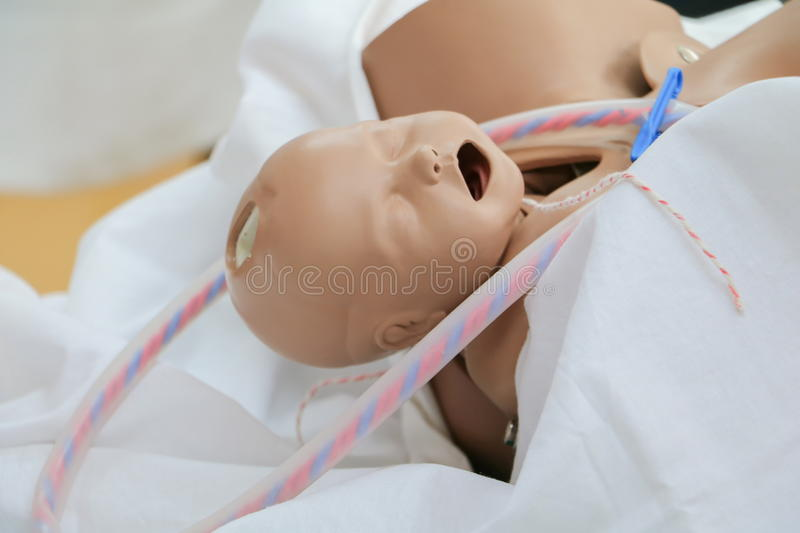 Refresher training to assist childbirth newborn with medical baby dummy. In emergency the midwife of doctor or physician royalty free stock images
