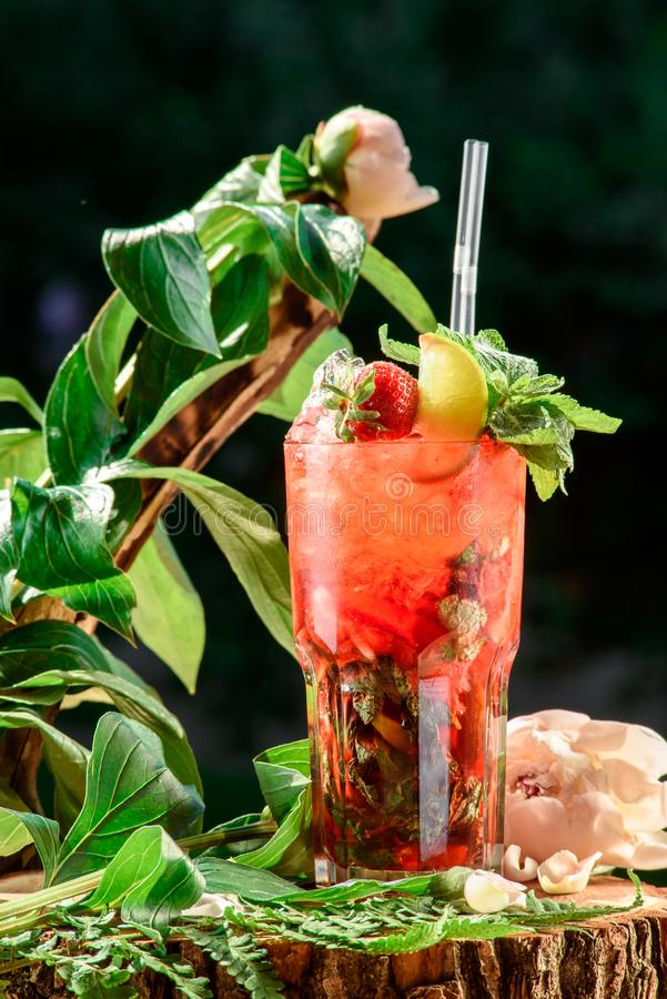 Refreshing cocktail with ice, mint, lemon and strawberries on the background of green leaves. space. close up. royalty free stock images