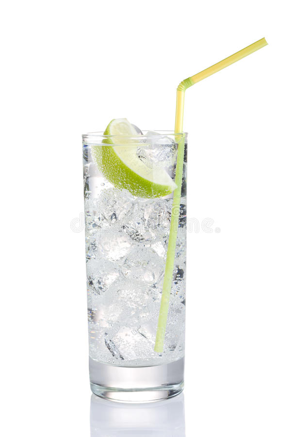 Download Refreshing drink stock photo. Image of cold, wedge, nobody - 23289204