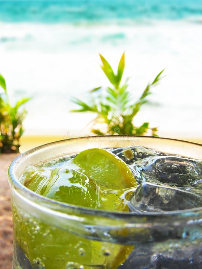 Refreshing Lemon Soda With Ice Royalty Free Stock Photos