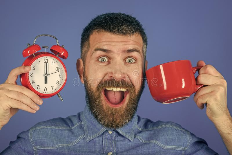 Refreshment break and energy. Man drink morning coffee or tea with alarm clock. Happy guy with mulled wine, clock on blue background. hipster with milk cup stock image
