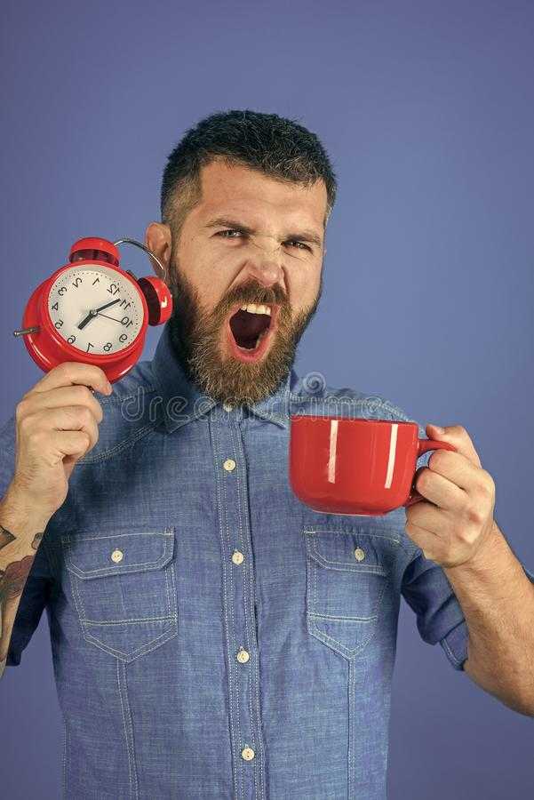 Refreshment break and energy. Hipster with milk cup, time. guy yawn with mulled wine, clock on blue background. Red mug with alarm, perfect morning. Man drink stock image