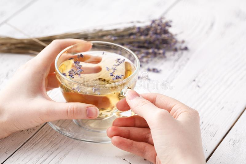 Refreshment and relax with herbal tea royalty free stock images