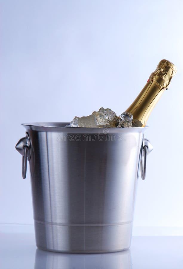 Refrigerador de Champagne foto de stock royalty free