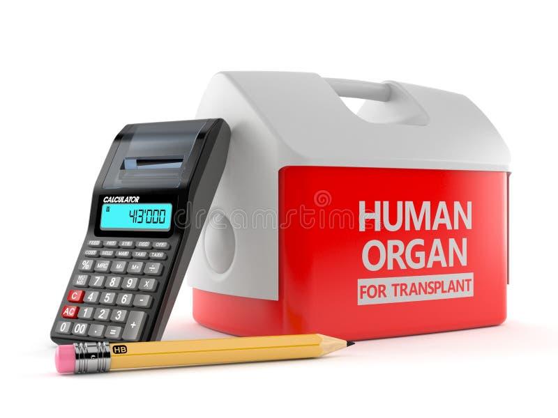 Refrigerador para el órgano humano con la calculadora y el lápiz libre illustration