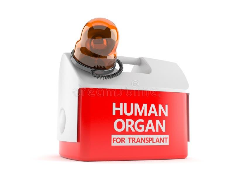 Refrigerador para el órgano humano con la sirena de la emergencia libre illustration