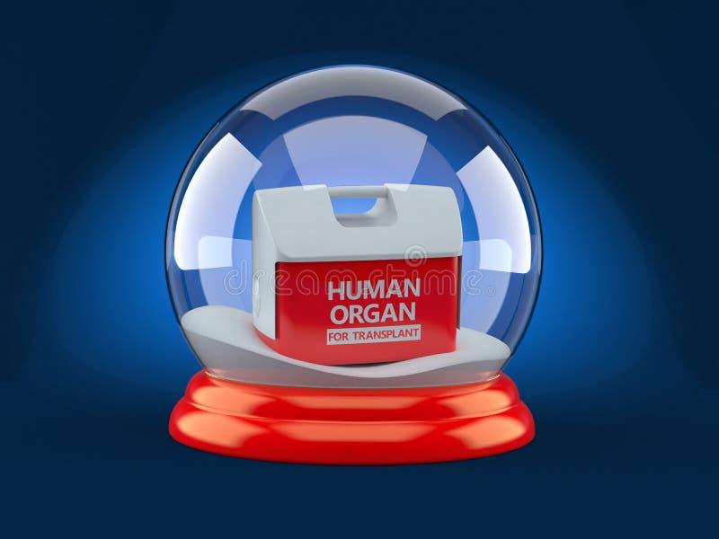 Refrigerador para el órgano humano dentro de la bola de vidrio de la Navidad ilustración del vector