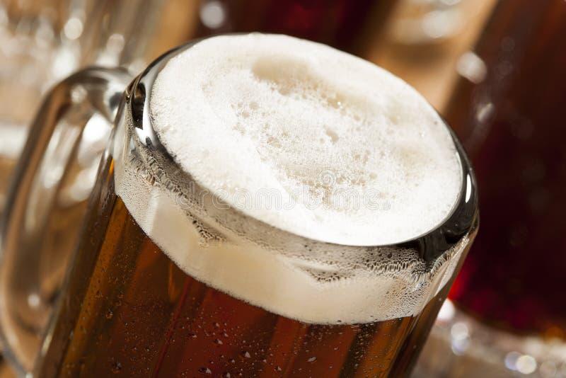 Refrigerante root beer de refrescamento frio fotografia de stock royalty free