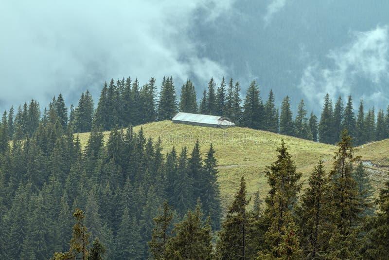 Refuge pour animaux des montagnes de Rarau, paysage photographiées images libres de droits