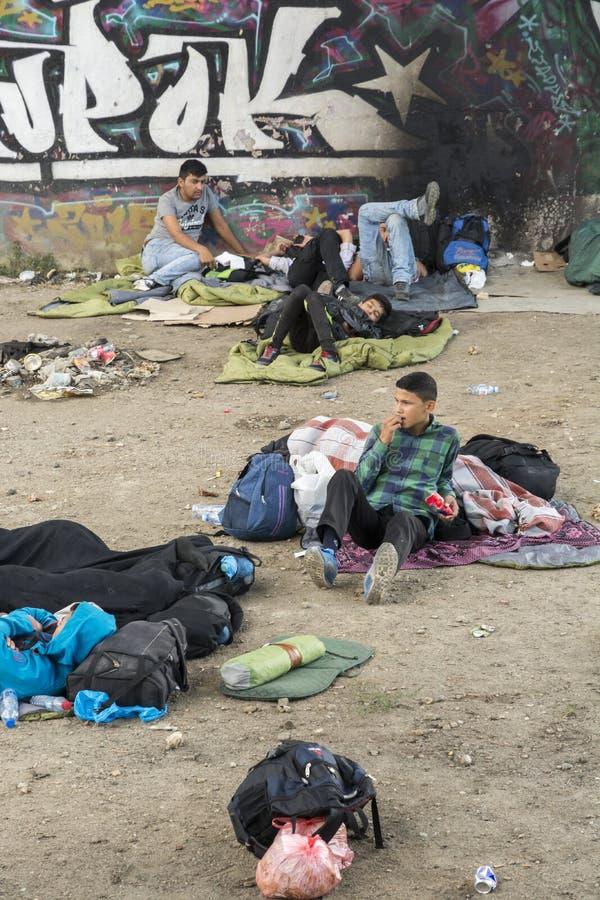Refugiados sírios imagem de stock royalty free