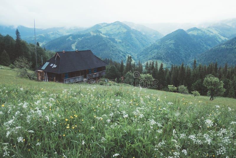 Refugio в высокой горе стоковое изображение rf