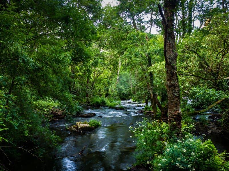 Refugio de Verdes в Coristanco - Coruna стоковое изображение rf
