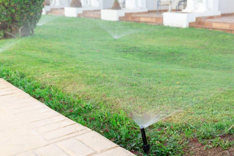 Regadera en el jardín que riega el césped Concepto de riego automático de los céspedes foto de archivo