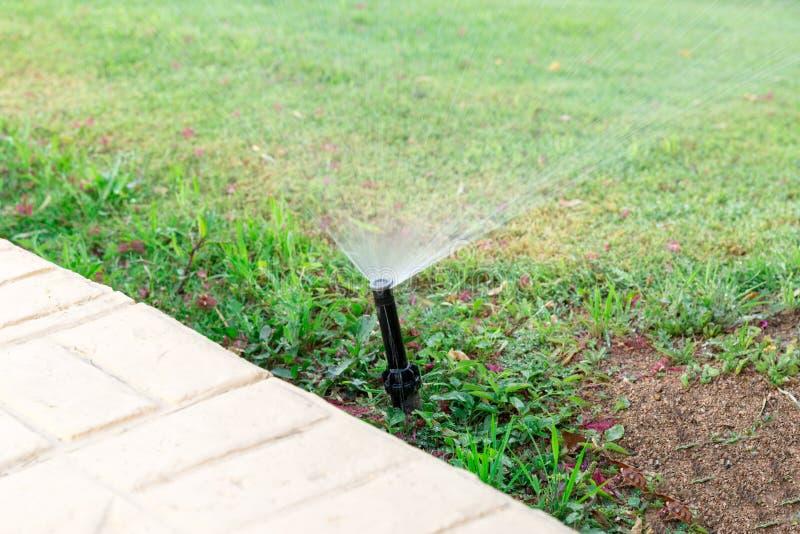 Regadera en el jardín que riega el césped Concepto de riego automático de los céspedes fotografía de archivo