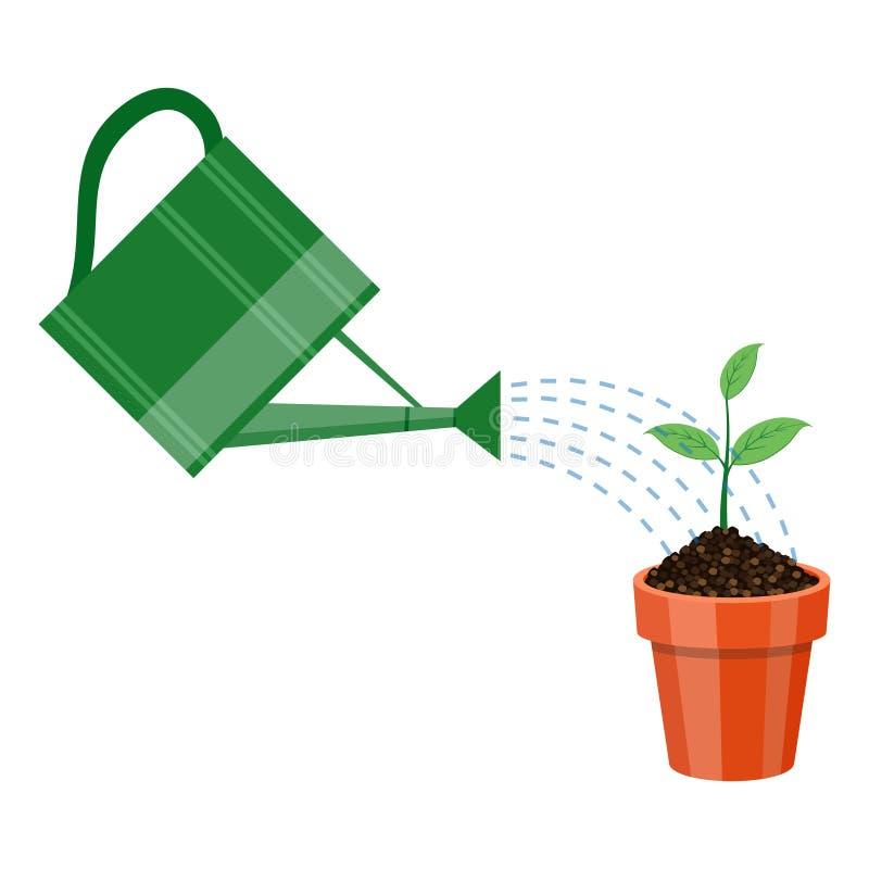Regadera y planta en el pote ilustraci n del vector for Manijas de regadera