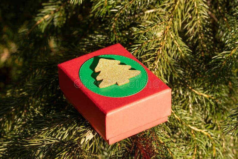 Regali misteriosi in un contenitore di regalo sui rami dell'albero di Natale la vigilia del Natale e del San Valentino fotografia stock libera da diritti