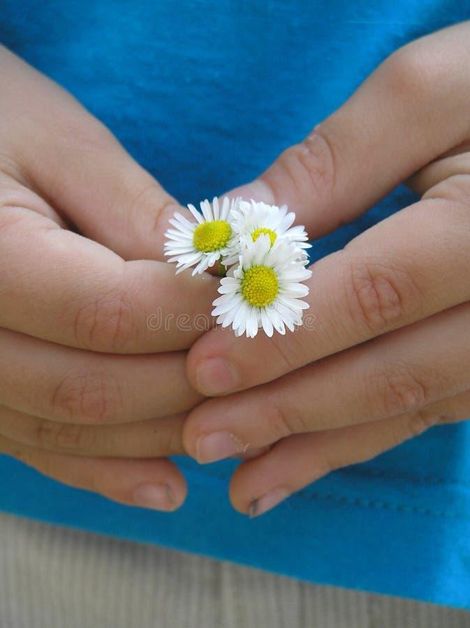Download Regalo da un bambino fotografia stock. Immagine di mani - 210966