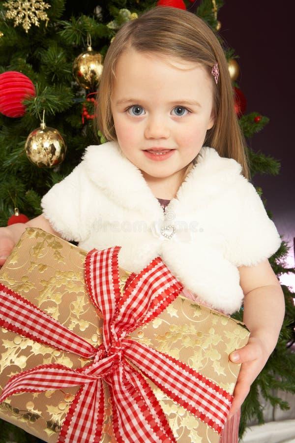 Regalo de la explotación agrícola de la chica joven delante del árbol de navidad foto de archivo libre de regalías
