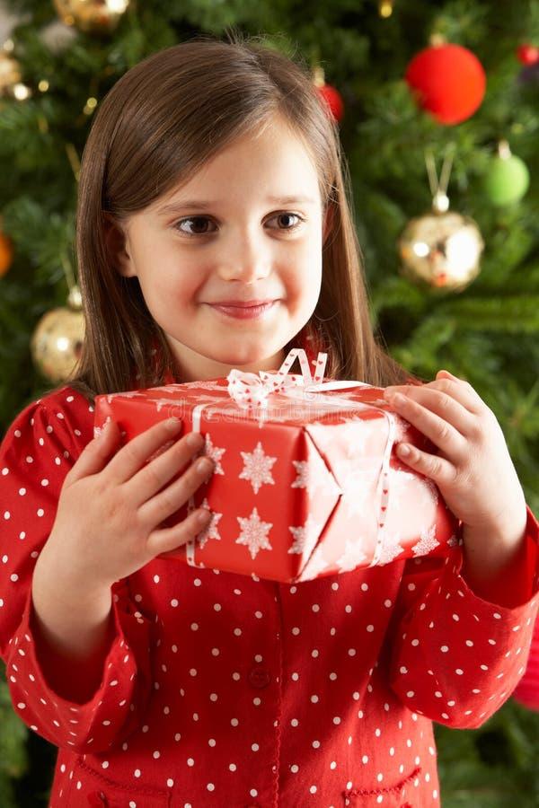 Regalo de la explotación agrícola de la muchacha delante del árbol de navidad fotos de archivo